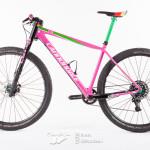 RS-pink-bike-8241