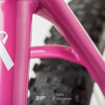 RS-pink-bike-8318